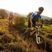 Fahrradfahrer fahren durch die Heide