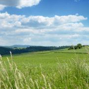 Blick über das Frankenberger Land