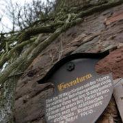 Hexenturm Frankenberg